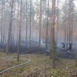 pożar lasu osp chot2