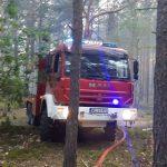 pożar lasu osp chot3