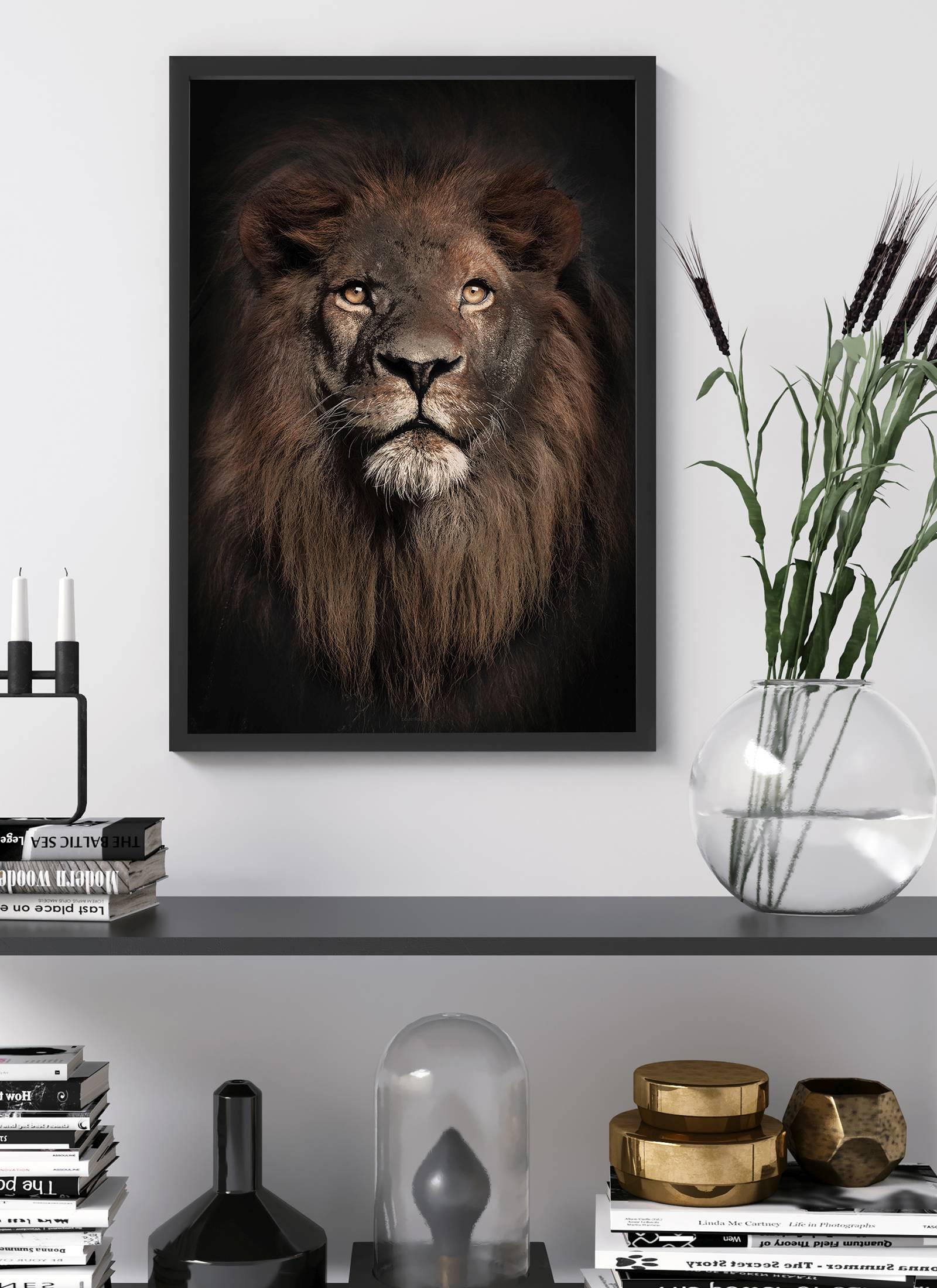 Plakaty Ze Zwierzętami Udekoruj Swoje Wnętrze