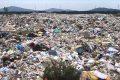 LEGIONOWO. Zagrożenie bezpieczeństwa sanitarnego w Legionowie